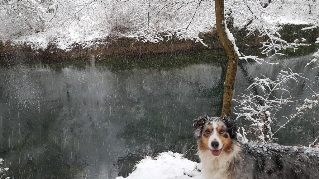 iska du temple d opium tresors d easy blue a la riviere neige